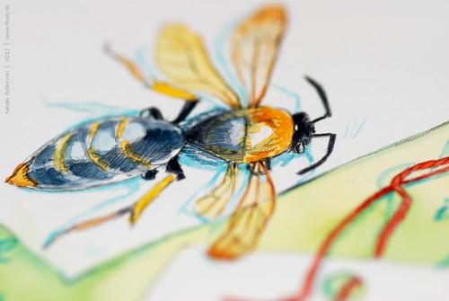 Bee, detail