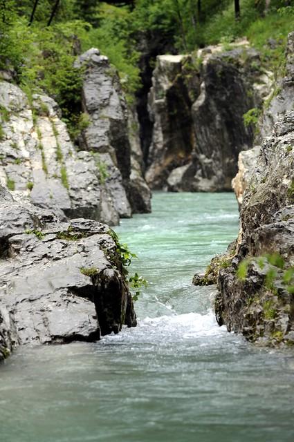 Header of Slovenia