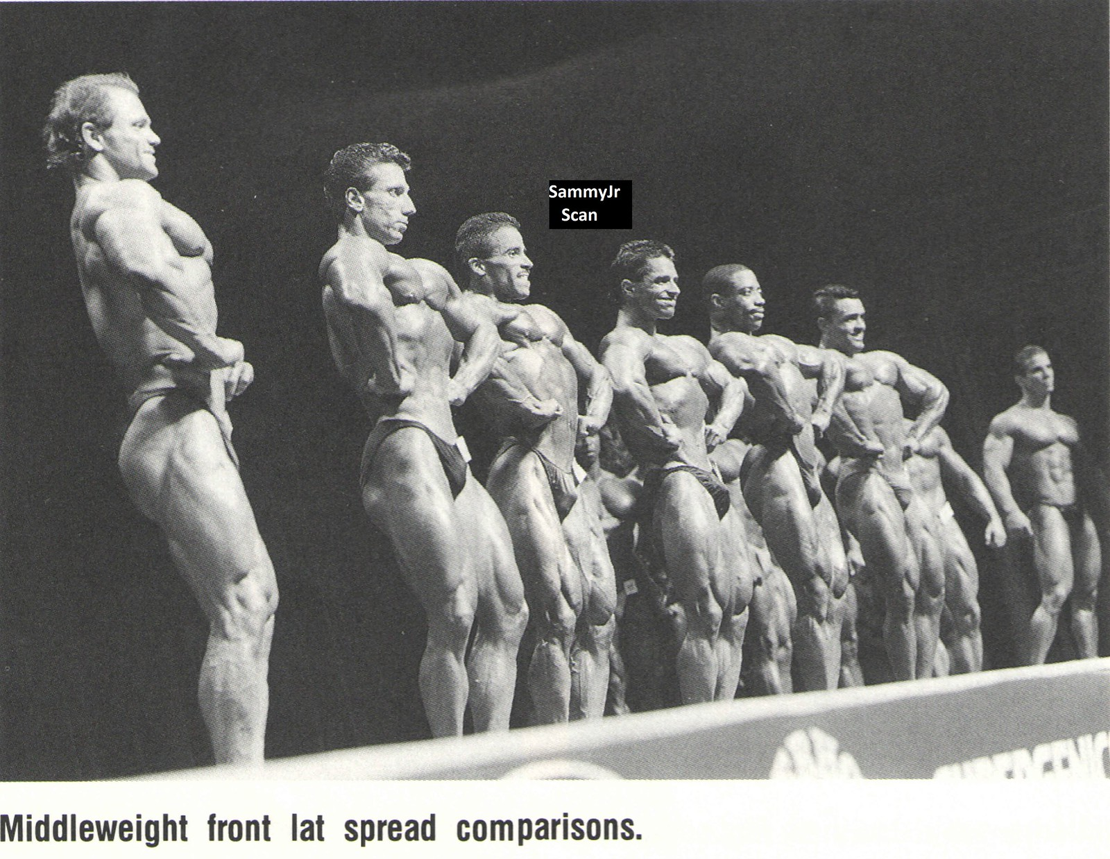 ronnie coleman bench
