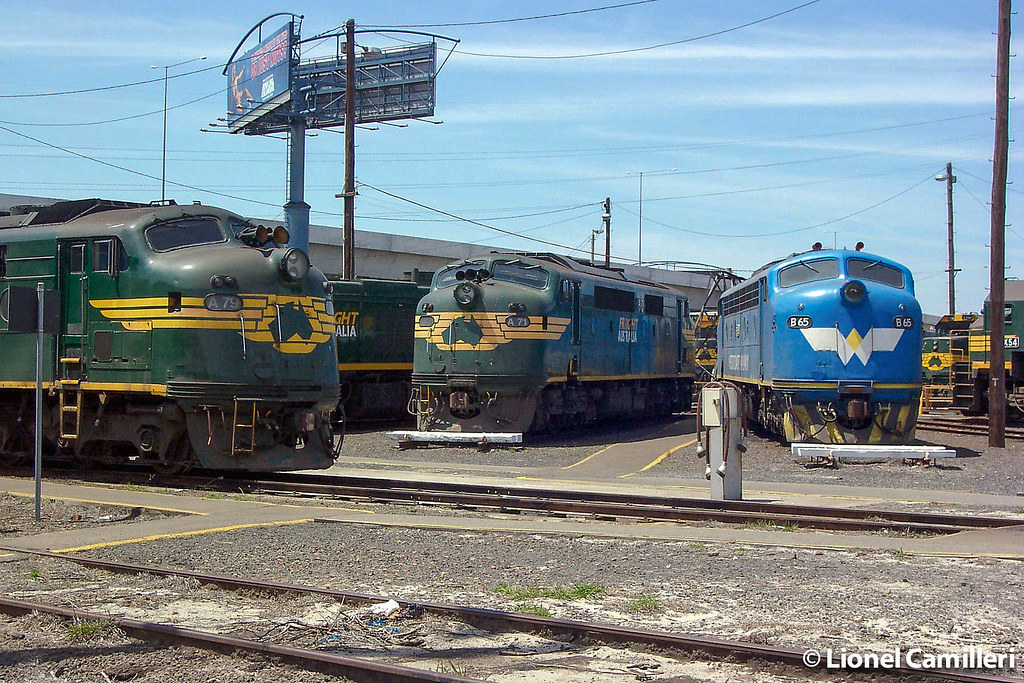 Bulldogs at South Dynon by LC501