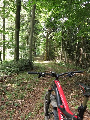 Traum Trails