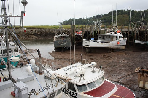 Bay of Fundy, not quite High Tide.