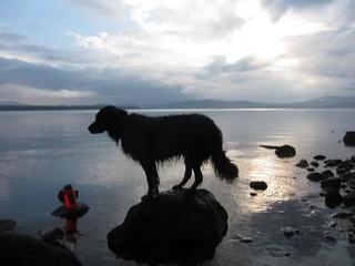 Sasha with Flagstaff Sunrise