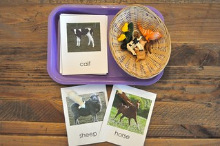Farm Animals Cards and Figures