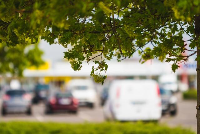 [022] Parking Romance