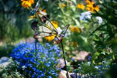 brass dragonfly