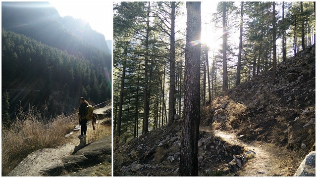 That's the trail from Manikaran to Kasol. Credits - Akshay Maggu