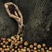 Fruta amarga by Manifeste Des Yeux (Leila Amat)