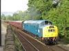 Class 40 345 40145 TNT 57313 on 1Z47 Carnforth - Buxton at Furness Vale 30/09/2016