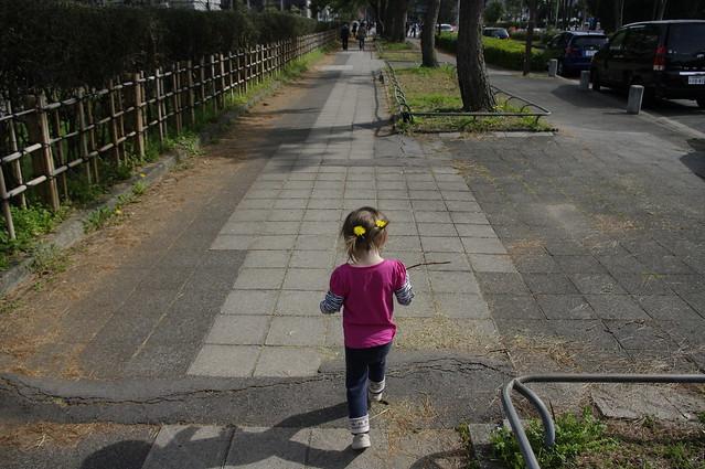 hanami 2012: meijo nagoya castle