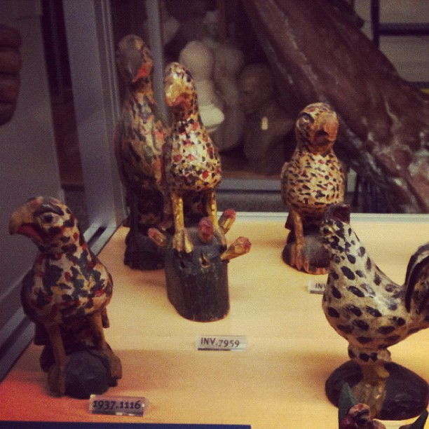 Schimmel Birds at the New York Historical Society