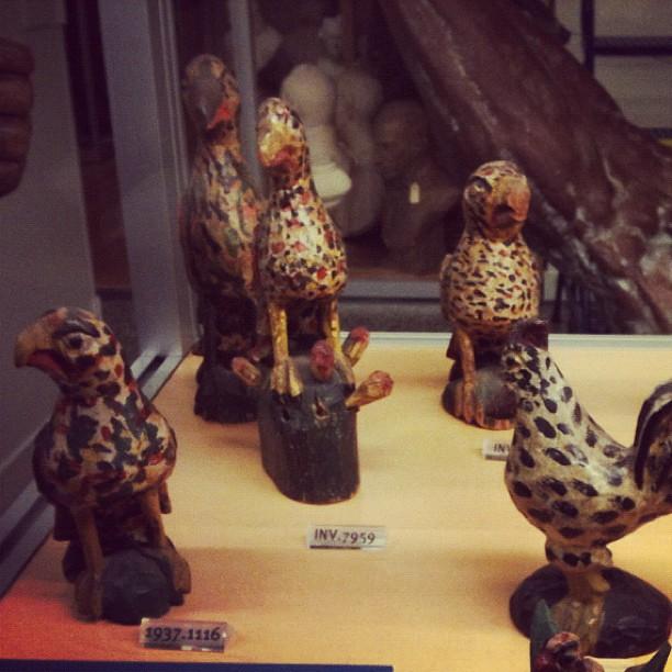 Schimmel Birds at the New York Historical Society
