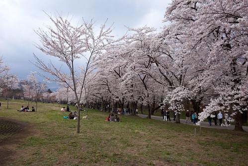 AKG_2012-04-19_037