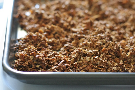 Chocolate Almond Granola 11