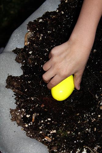 1_Buring-Egg