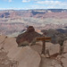 Small photo of Ooh aah point