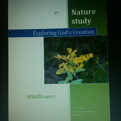 Wildflower #nature study by me for Exploring God's Creation #homeschool #freebies Friday on Adventurez