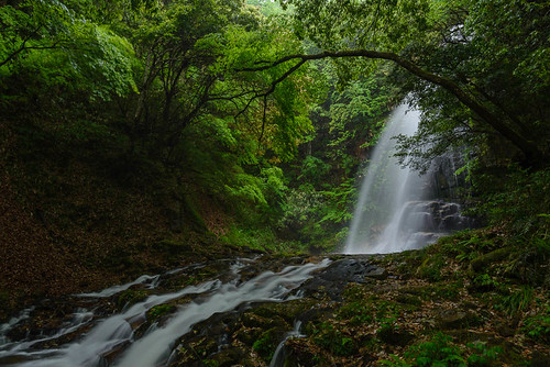 new longexposure green leaves japan river waterfall ngc 日本 shimane 滝 新緑 島根県 02景色 邑智郡 赤馬滝 ohnancho