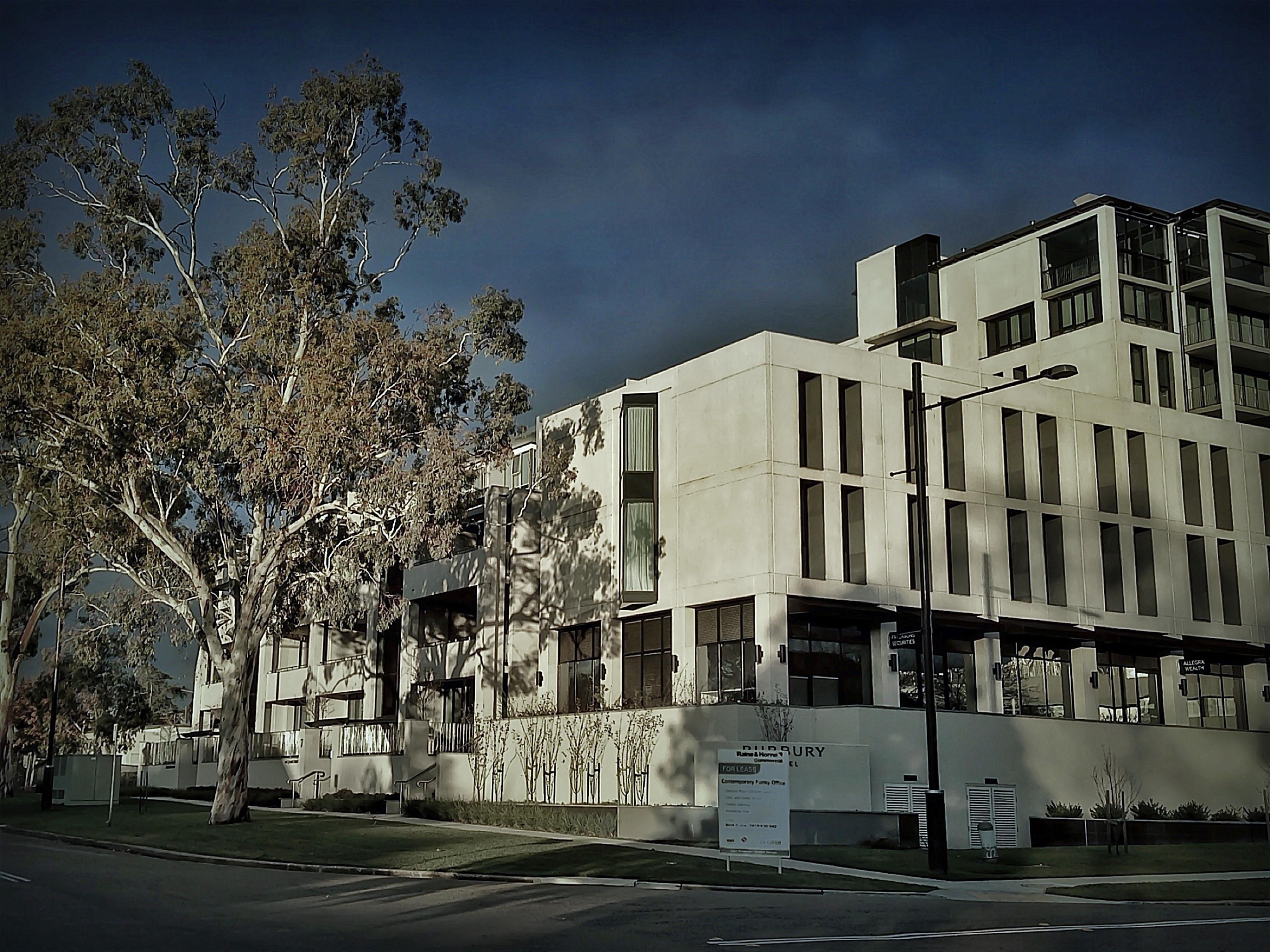 Barton Springs Apartments