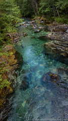 Opal Creek Ancient Forest Center