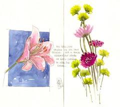 31-05-13 by Anita Davies