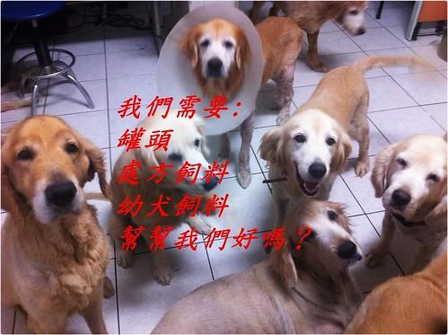 「需要物資」桃園狗腳印幸福聯盟,需要犬隻的處方飼料和幼犬罐頭飼料等,捐贈品可抵稅~謝謝大家~20130802