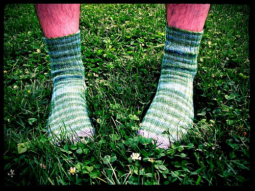 Meadow Socks