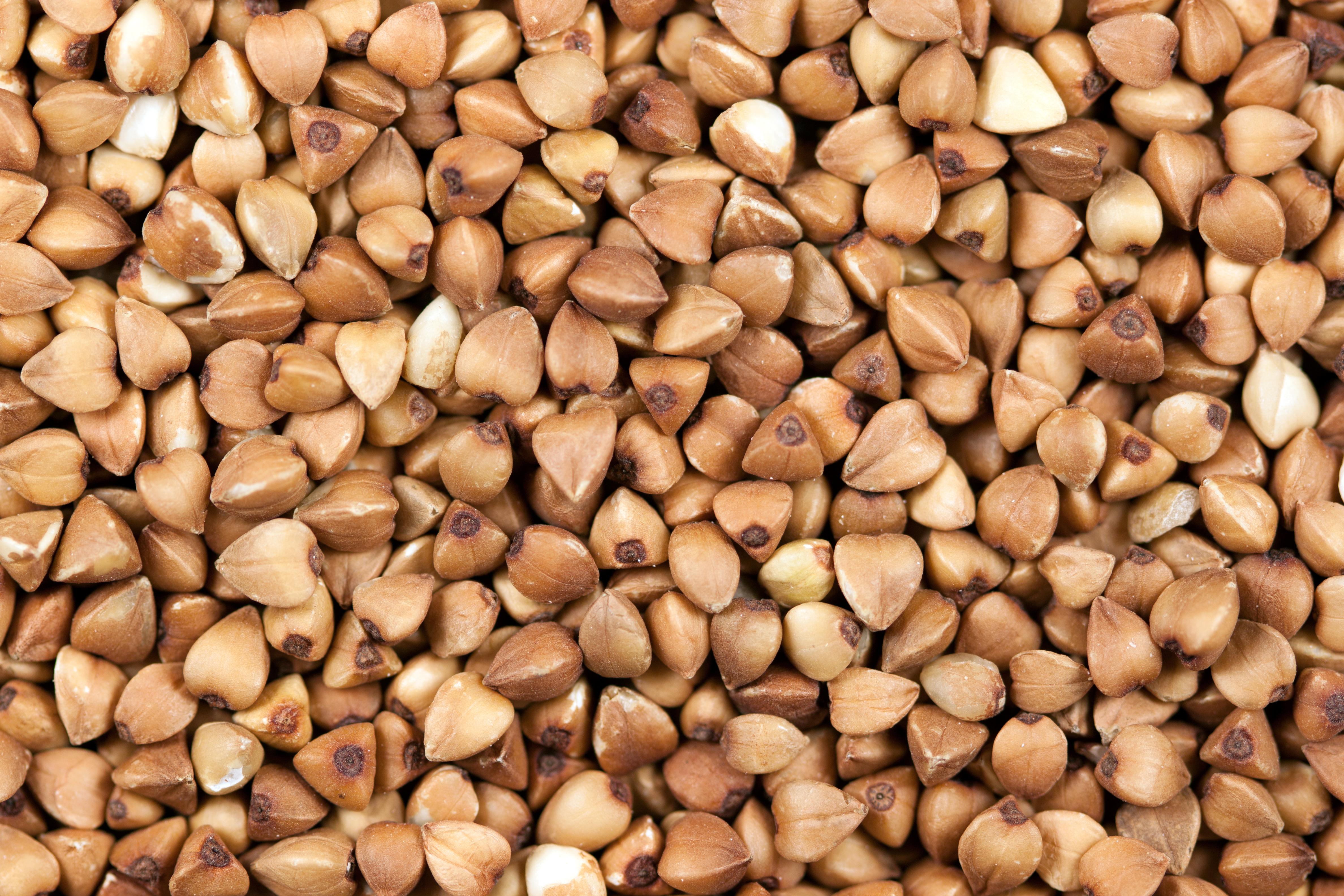 Buckwheat a grain