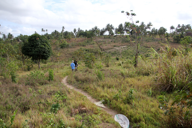 Path leading to the shamba
