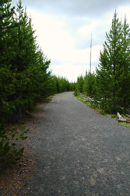 Smooth Flat Trail