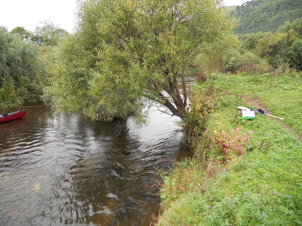 The river devon why so neglected for Fish river tree farm