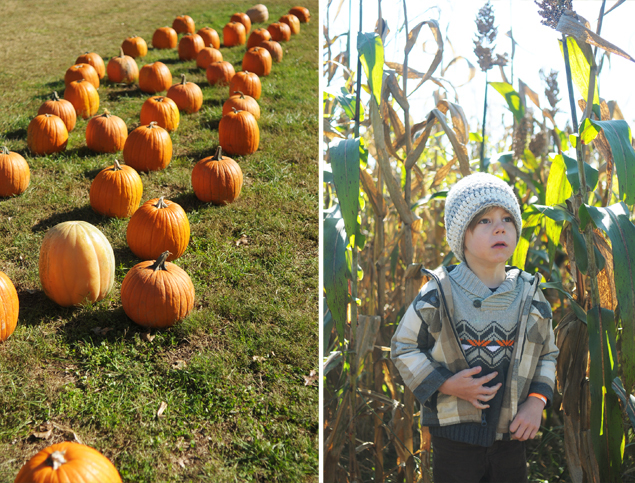 Pumpkin Patch Adventures - KaelahBee.com