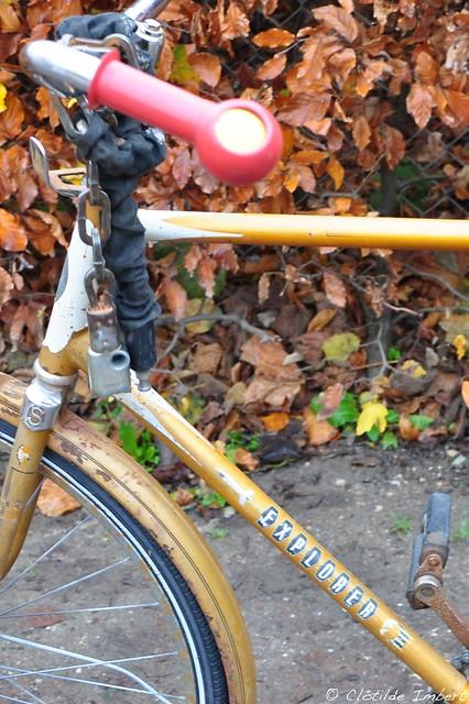 Astrid - bike name