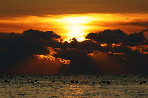 cloud seascape sunshine sunrise a900