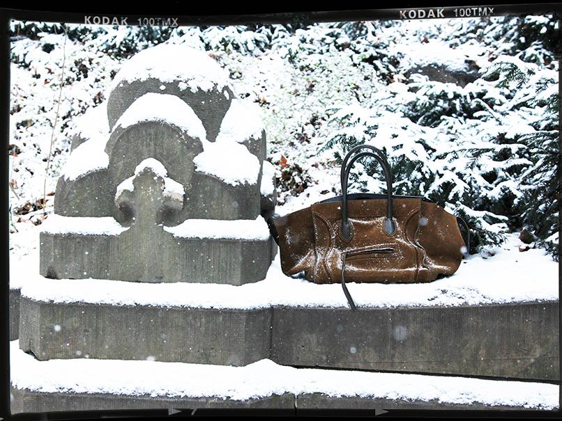 winterwonderland 5