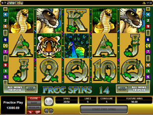 Adventure Palace Free Spins