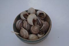 Street snails