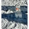 Como es difícil hacer un muñeco de nieve hicimos un perrito.  #sierranevada