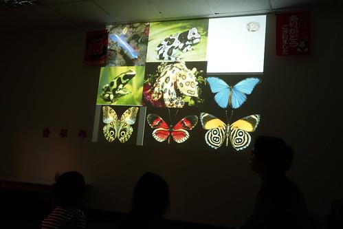 自然昆蟲課