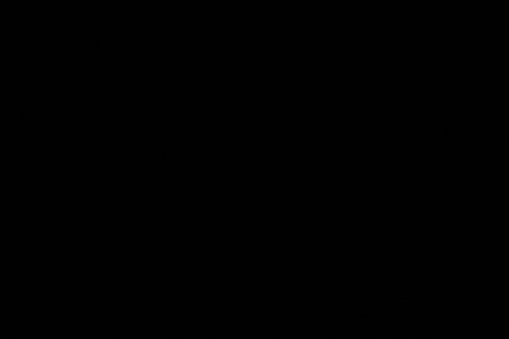 IMG_7492
