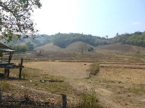 Th-Um Phang -Mototaxi (2)