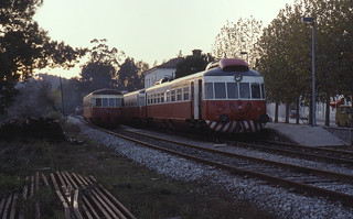 28.11.90  Serpins  Class 0301
