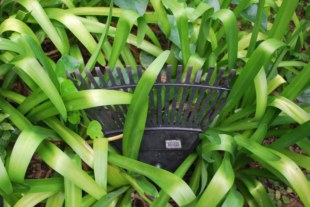 A photo showing a broken rake.