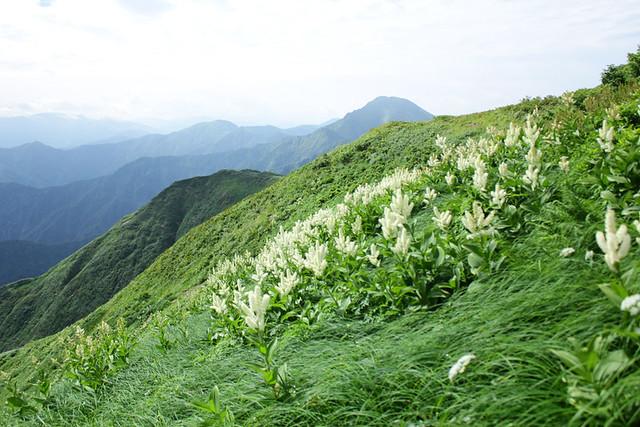 越後駒ケ岳_44