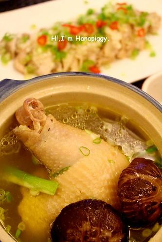 朝貢雞(30)