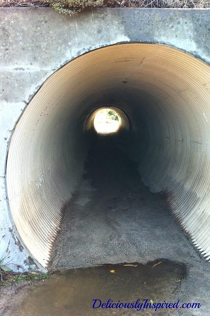 Pipe - Monterey