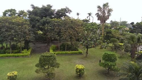 礁溪伯朗咖啡蘭花館