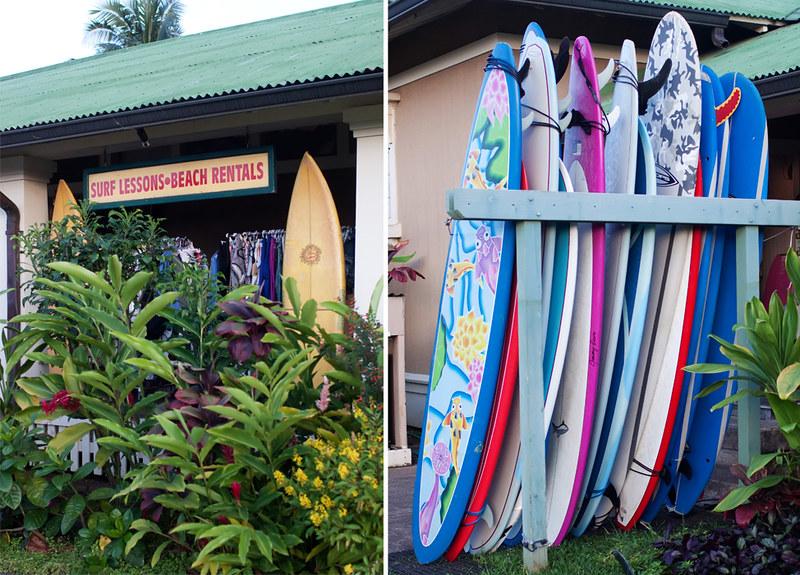 Kauai2014-3