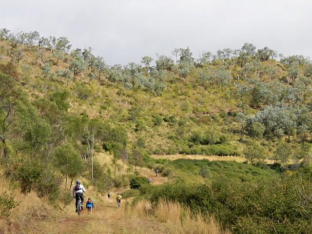 Razorback Road