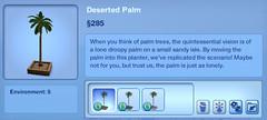 Deserted Palm